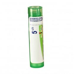 ACTAEA RACEMOSA BOIRON 5CH tube-granules