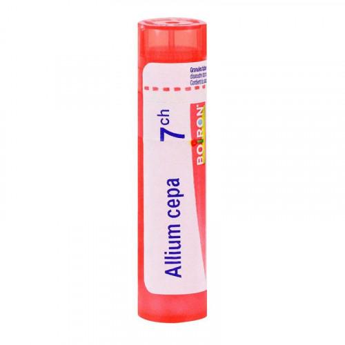 ALLIUM CEPA BOIRON 7CH tube-granules