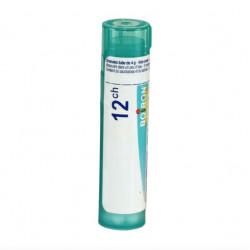 ARNICA MONTANA BOIRON 12CH tube-granules