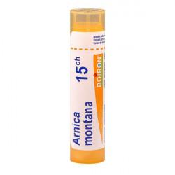 ARNICA MONTANA BOIRON 15CH tube-granules