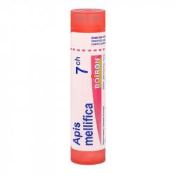 APIS MELLIFICA BOIRON 7CH tube-granules