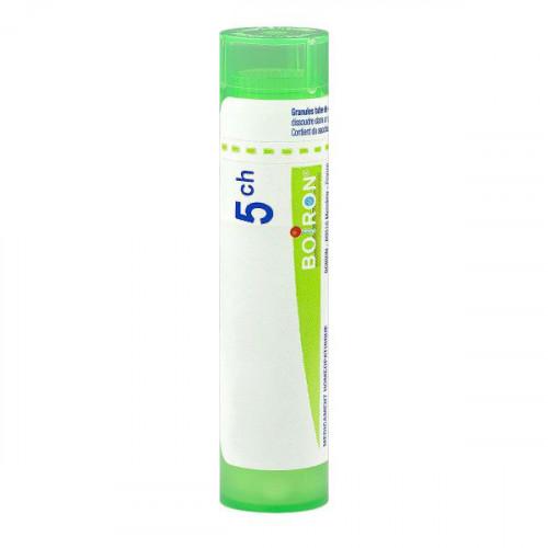 NATRUM SULFURICUM BOIRON 5CH tube-granules