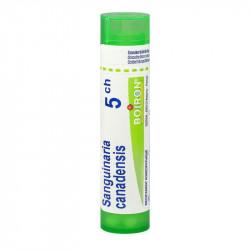 SANGUINARIA CANADENSIS BOIRON 5CH tube-granules