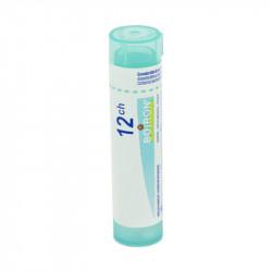 SEPIA OFFICINALIS BOIRON 12CH tube-granules