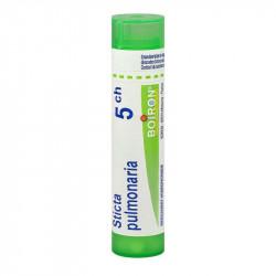 STICTA PULMONARIA BOIRON 5CH tube-granules