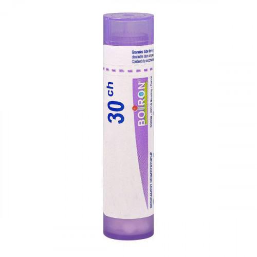 SULFUR IODATUM BOIRON 30CH tube-granules