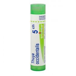 THUYA OCCIDENTALIS BOIRON 5CH tube-granules