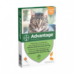 Bayer Advantage 40 Spot on chat et lapin de moins de 4 kg