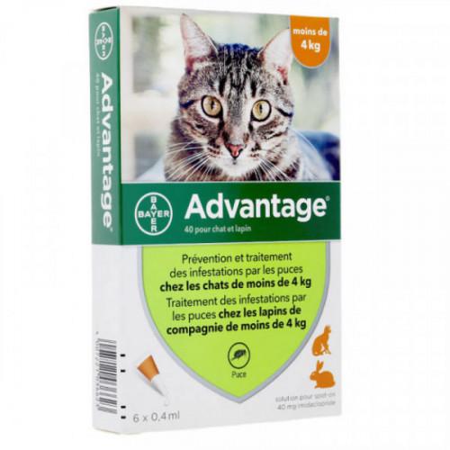 Bayer Advantage 40 Spot on chat et lapin de moins de 4 kg-6 pipettes
