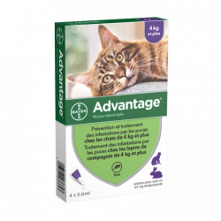 ADVANTAGE-80 CHAT/LAPIN PIPET 4