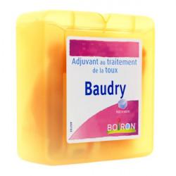 Baudry pâte à sucer Boiron 70 g