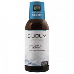 Santé Verte Silicium Organique 500ml