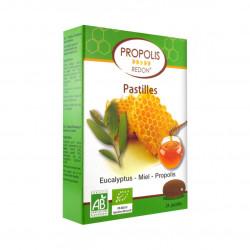 REDON PASTILLES PROPOLIS MIEL EUCALYPTUS BIO 24 PASTILLES