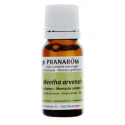 Pranarom huile essentielle de Menthe des champs Bio 10 ml