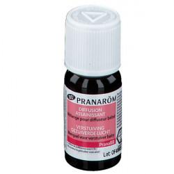 Pranarôm PranaBB diffusion assainissant 10 ml