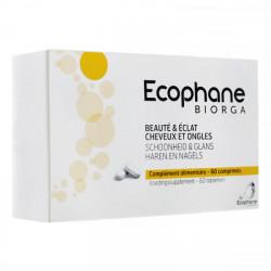 Ecophane 60 comprimés