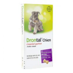Bayer Drontal Chien Comprimé Appétent 6 Comprimés