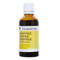 Pranarôm Huile Végétale Calophylle Bio 50 ml