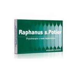 RAPHANUS S. POTIER - 12 Ampoules Buvables