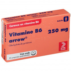 VITAMINE B6 ARROW 250 mg, 20 comprimés