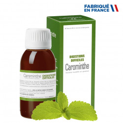 LEHNING CAROMINTHE Digestion difficile - Solution Buvable 90ml