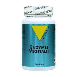 VIT ALL+ ENZYMES VEGES - 30 Capsules