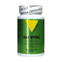 VIT ALL+ SILY VITAL EXT STAN - 60 Comprimés