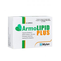 MYLAN ARMOLIPID PLUS - 30 Comprimés