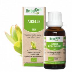 HERBALGEM AIRELLE BIO - 30 ml