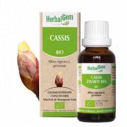 HERBALGEM CASSIS BIO - 30 ml