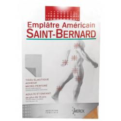 SAINT BERNARD EMPLÂTRE AMERICAIN