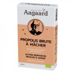 AAGAARD PROPOLIS BRUTE A MACHER - 20 g