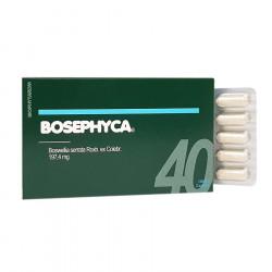 Bosephyca Caps 40