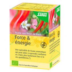 SALUS TISANE FORCE & ENERGIE - 15 Sachets