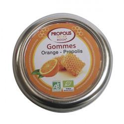REDON PROPOLIS Gommes Orange 45g
